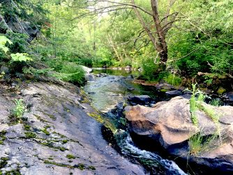 Mill Creek in Haileybury