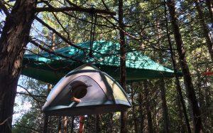 Matching Tentsile birdhouse on Farr Island