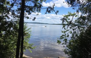 Great view of Lake Temiskaming from your Tentsile on Farr Island