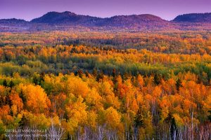 Témiscamingue fall colours tour photo by Mathieu Dupuis