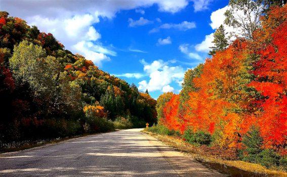 Beautiful fall colours along highway 533 between Mattawa and Témiskaming during our tour around the lake. / Magnifiques couleurs d'automne le long de la route 533 entre Mattawa et Témiskaming pendant notre voyage autour du lac.