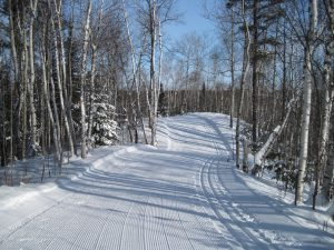 Quality ski trail at Temiskaming Nordic