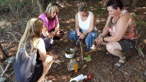 Wellness retreat on Farr Island