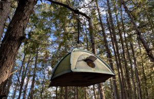 Discover the birdhouse while glamping on Farr ISland