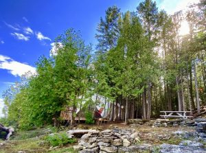 Cedar Grove Glamping Site on Farr Island